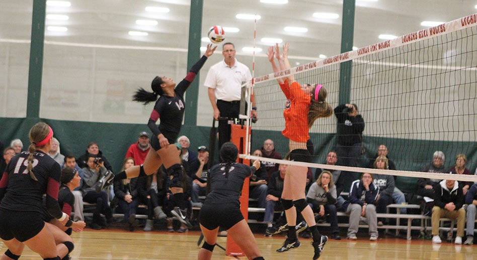 Photo for Volleyball�s Season Ends in WHAC Quarterfinal